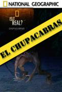 Ver Paranormal: El Chupacabras [flash] online (descargar) gratis.
