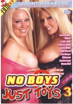 Ver No Boys Just Toys 3 (DvDrip) (Inglés) [torrent] online (descargar) gratis.