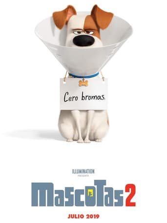 Ver Mascotas 2 (2019) (Ts Screener hq) (Latino) [flash] online (descargar) gratis.