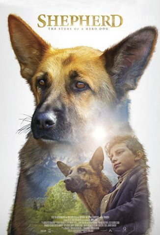 VerSHEPHERD: The Story Of a Hero Dog (2019) (720p) (subtitulado) [flash] online (descargar) gratis.