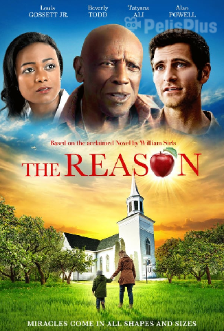 VerThe Reason (2020) (1080p) (subtitulado) [flash] online (descargar) gratis.