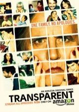 VerTransparent - 1x01 [torrent] online (descargar) gratis.