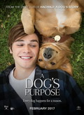 Ver A Dogs Purpose (2017) (HDRip) [torrent] online (descargar) gratis.