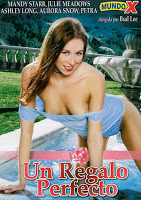 Ver Un regalo perfecto xxx (2003) (HD) (Español) Online [streaming] | vi2eo.com