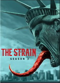 Ver The Strain - 3x07  (HDTV) [torrent] online (descargar) gratis.