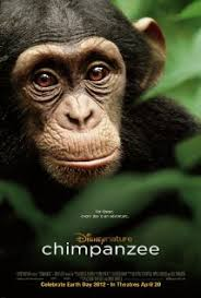 Ver Chimpanzee (2012) [Latino] (HD) (Opcion 1) [flash] online (descargar) gratis.
