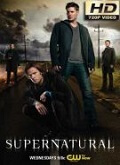 Ver Sobrenatural - 13x18 (HDTV-720p) [torrent] online (descargar) gratis.