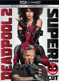 Ver Deadpool 2 (V. Extendida) (2018) (BDremux-1080p) [torrent] online (descargar) gratis.