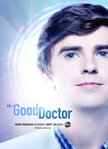 Ver The Good Doctor - 2x14 (HDTV) [torrent] online (descargar) gratis.