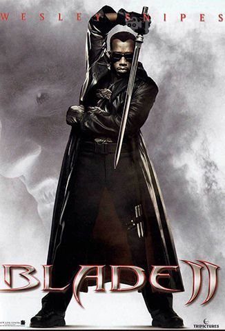 Ver Blade II (2002) (1080p) (Latino) [flash] online (descargar) gratis.