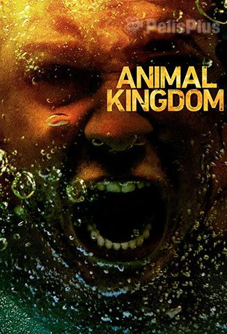 Ver Animal Kingdom - 2x01 (2016) (480p) (Subtitulado) [flash] online (descargar) gratis.