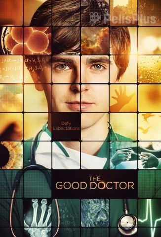 Ver The Good Doctor - 1x13 (2017) (1080p) (Latino) Online [streaming] | vi2eo.com