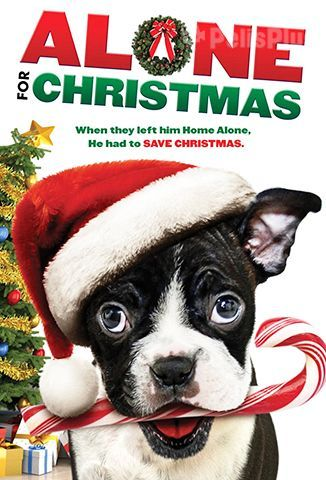 Ver Alone for Christmas (2013) (720p) (Subtitulado) [flash] online (descargar) gratis.