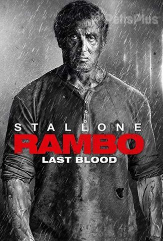 Ver Rambo: Last Blood (2019) (1080p) (latino) [flash] online (descargar) gratis.